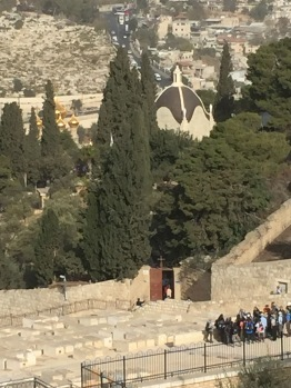 Looking down the Mount of Olives path